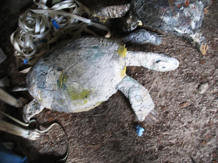 turtle.alponsavanni.lo